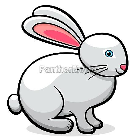 vector cute rabbit cartoon illustration