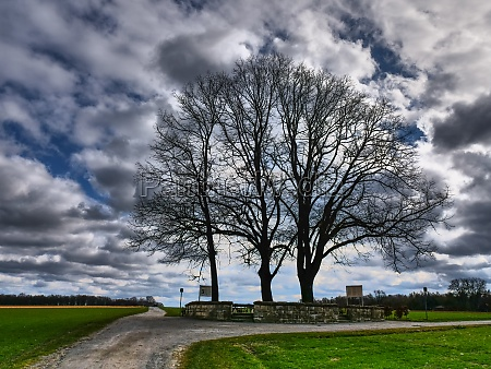 the city of coesfeld in westphalia