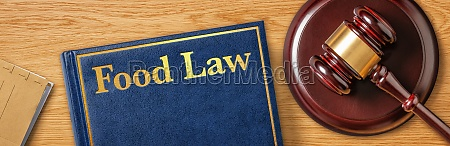 a gavel with a law book