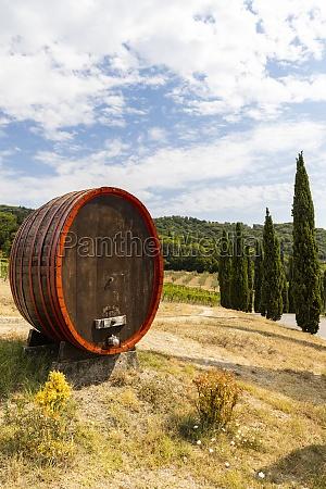wine barrel near firenze tuscany italy