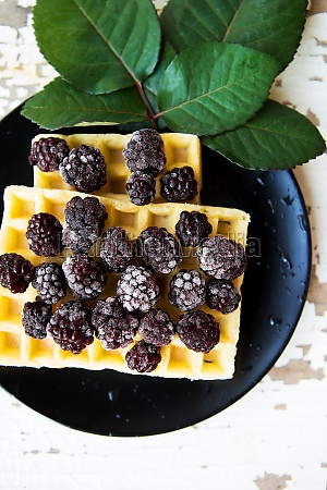 belgian waffles with blackberry