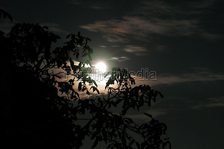 shining moon celestial body and earth