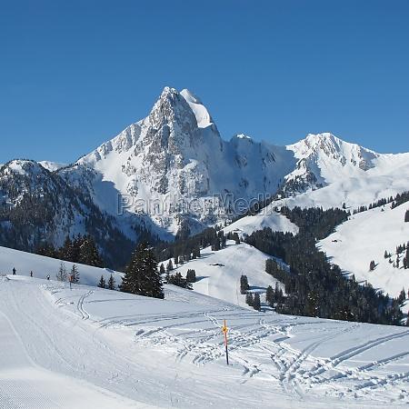 beautiful view from the eggli ski