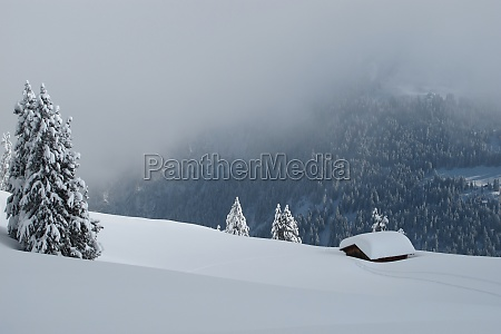 winter, day, in, the, alps - 29713641