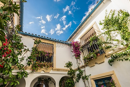 typical patio in cordoba andalusia spain