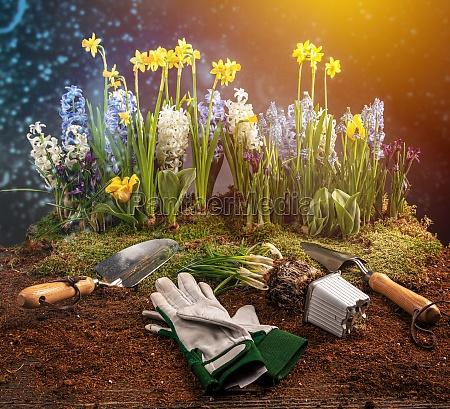 spring gardening works concept