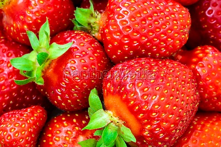 strawberries arranged as the background