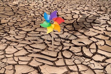 colorful pinwheel on the arid soil