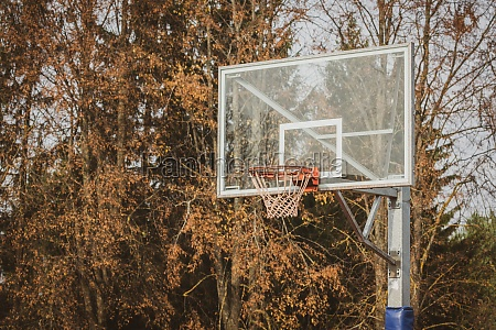 basketball hoop with autumn trees in