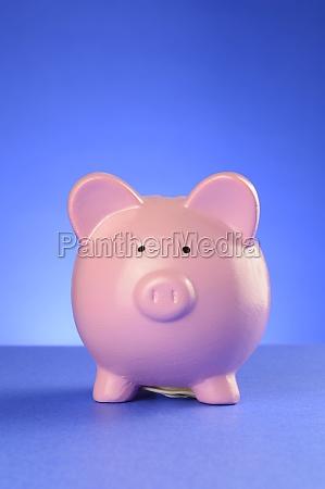 piggy bank account