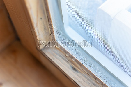 condensates on a wooden window