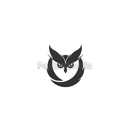 owl logo vector icon design template