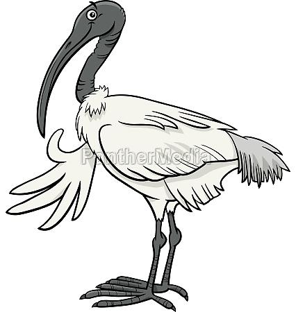 cartoon ibis bird comic animal character