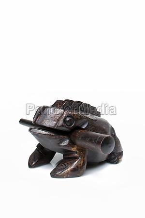 thai wood frog