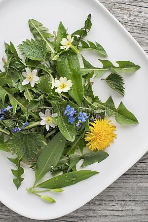 spring food