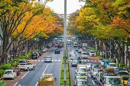 omotesando autumn leaves