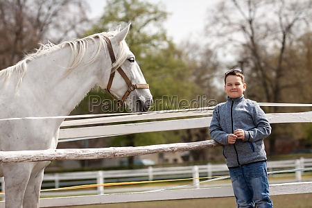 white horse looks at the boy