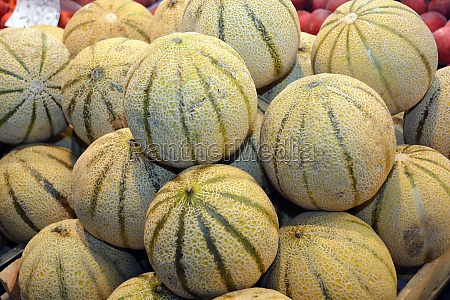 melons in the market hall