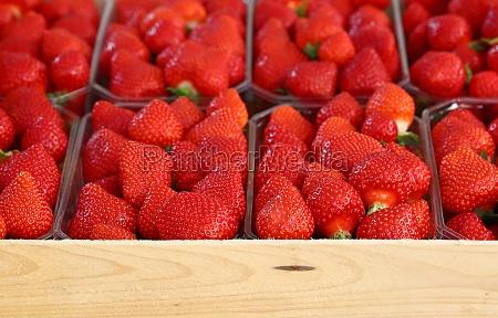 close up fresh strawberry on retail