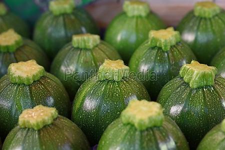 close up fresh green zucchini on