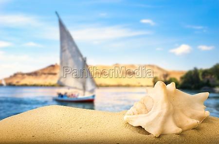 sea shell and sailboat