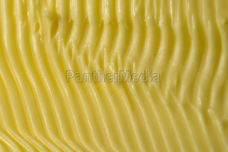 full frame abstract margarine texture made