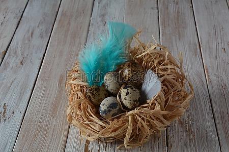 fresh quail eggs healthy diet food