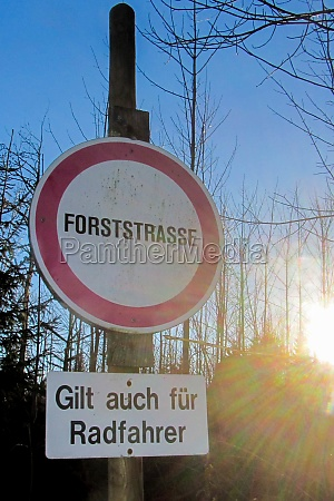 a forest road for transportation or