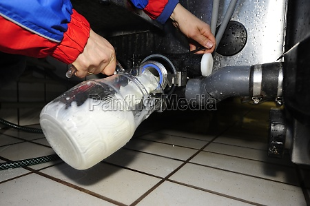 the storage of milk in the