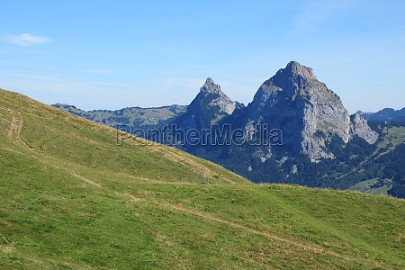 green meadow and mt mythen
