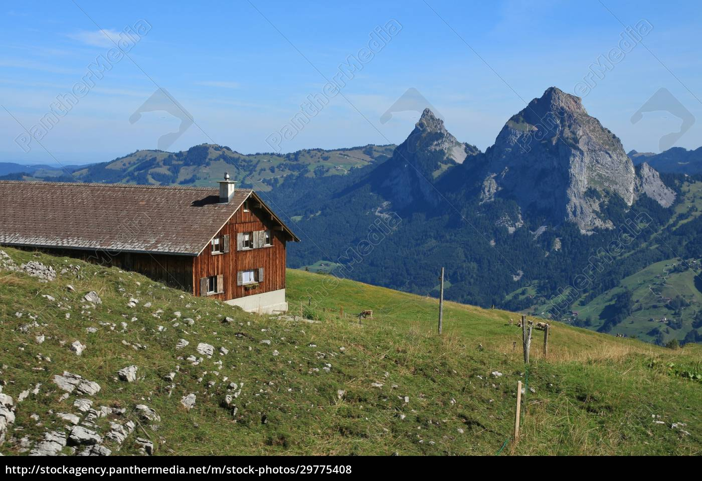view, of, mt, mythen - 29775408