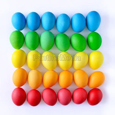 easter eggs on white background rainbow