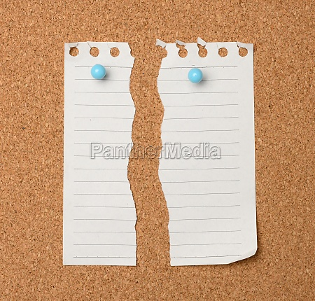 torn sheet of white paper in