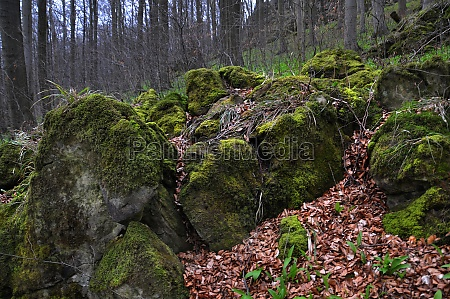rocks in the ith mountains