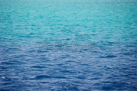 red sea background clean blue water