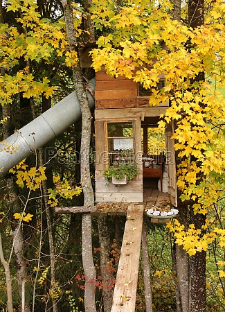 little tree house with bed and