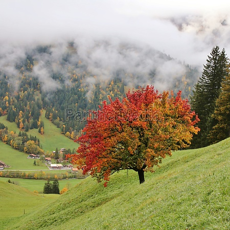 autumn day in the swiss alps