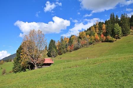 rural autumn background