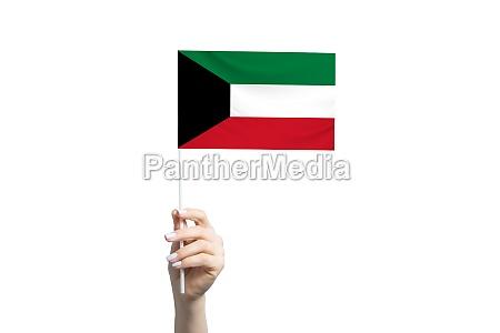 beautiful female hand holding kuwait flag