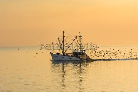 fishing boat buesum north sea schleswig