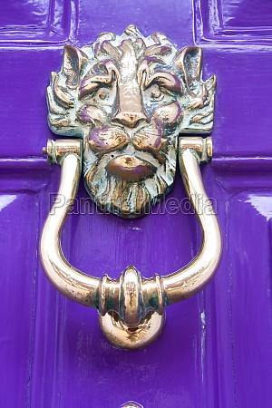 purple door with lion door knocker