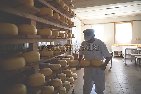 cheese maker at the storage
