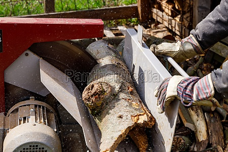 making of firewood with a saw