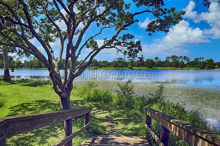 wooden pedestrian bridge towards the lake