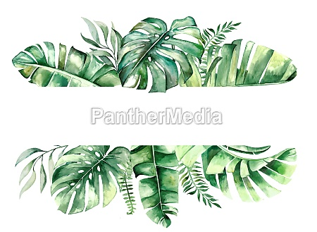 watercolor tropical leaves frame illustration