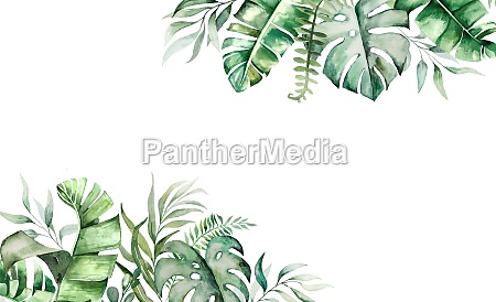 watercolor tropical leaves border illustration