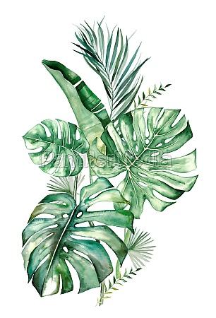 watercolor tropical leaves bouquet illustration