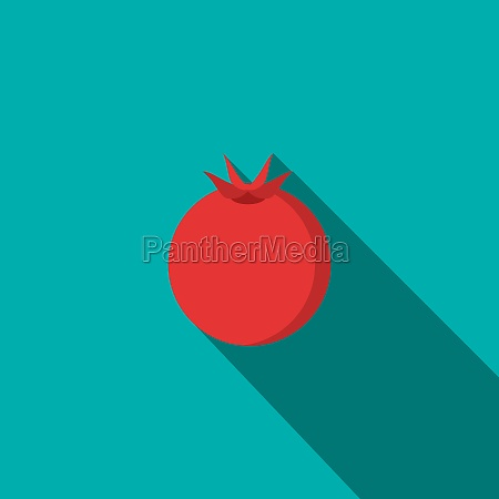 pomegranate icon flat style