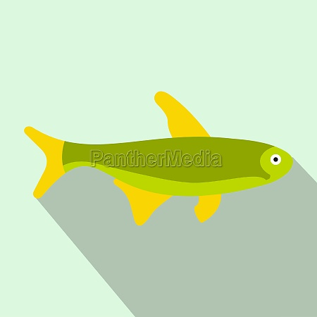 trout fish icon flat style