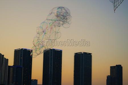 bubbles and evening tokyo toyosu